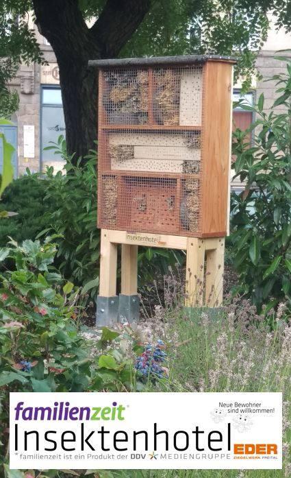 Insektenhotel (Foto: DDV Media)
