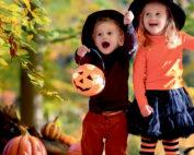 Halloween (Foto: fotolia.com©famveldman)